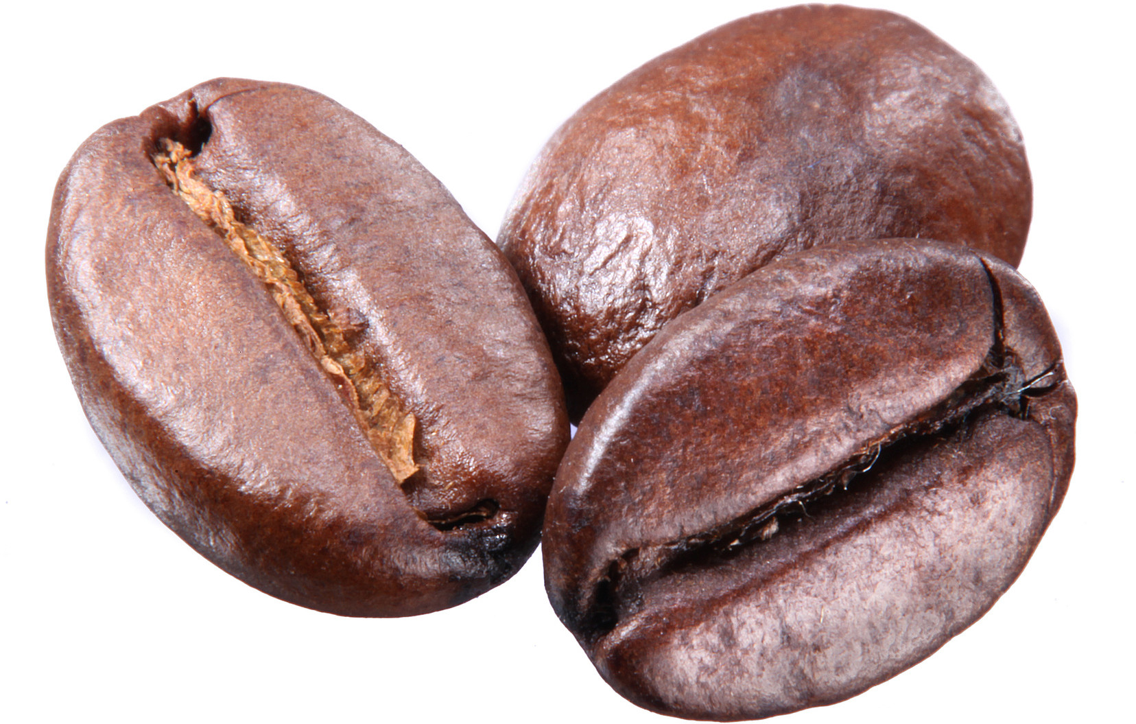 Coffee beans isolated on white background. Each bean have to clipping path.